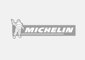 Michelin Logo Grey background